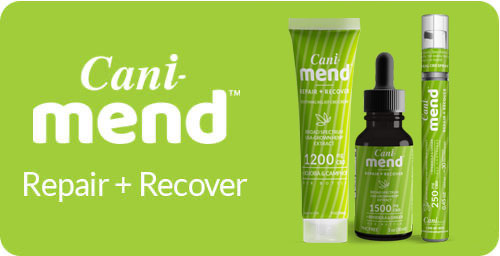 CaniBrands CBD for Recovery